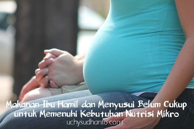 makanan ibu hamil uchy Sudhanto's blog